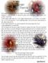 Dragon Magick page 2
